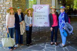 Ladies Tea and Tour